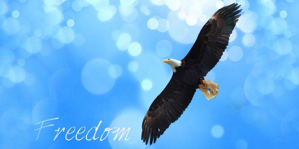 Frei sein, Deine Einzigartigkeit zu leben